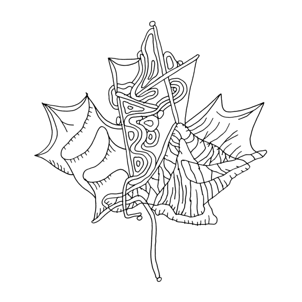 how to draw a canadian maple leaf