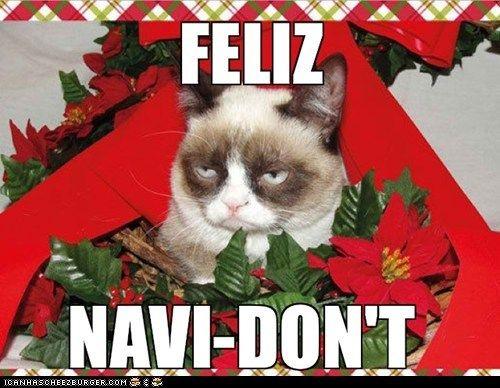 Grumpy cat christmas, grumpy christmas, grumpy cat humor... For more humour and memes visit www.bestfunnyjokes4u.com