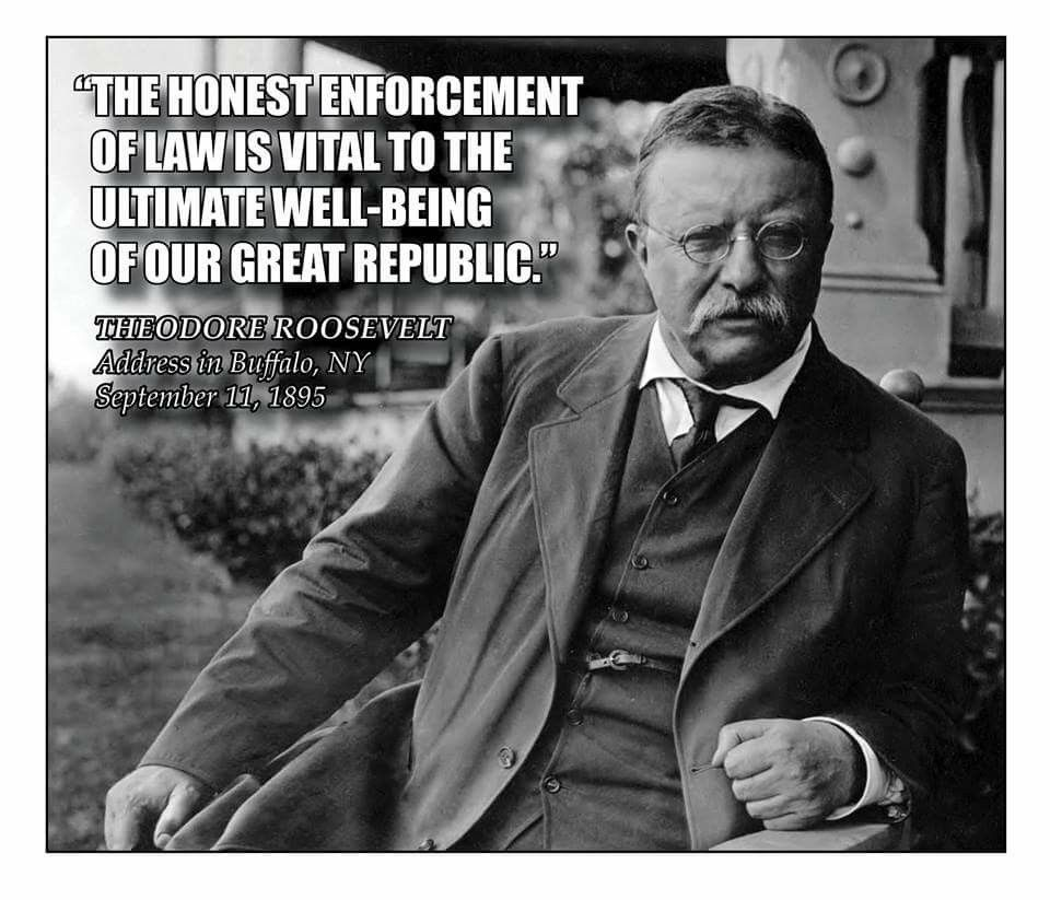 Tr On The Enforcement Of Law Art Of Manliness Manliness Teddy Roosevelt