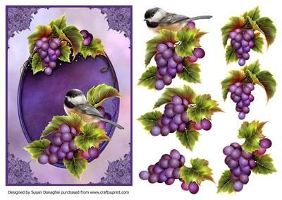 Flowers Birds 5 on Craftsuprint designed by Susan Donaghie - Another in my bird…