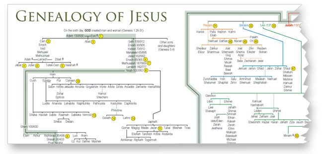 Jesus family tree seeing god s faithfulness in the genealogy of
