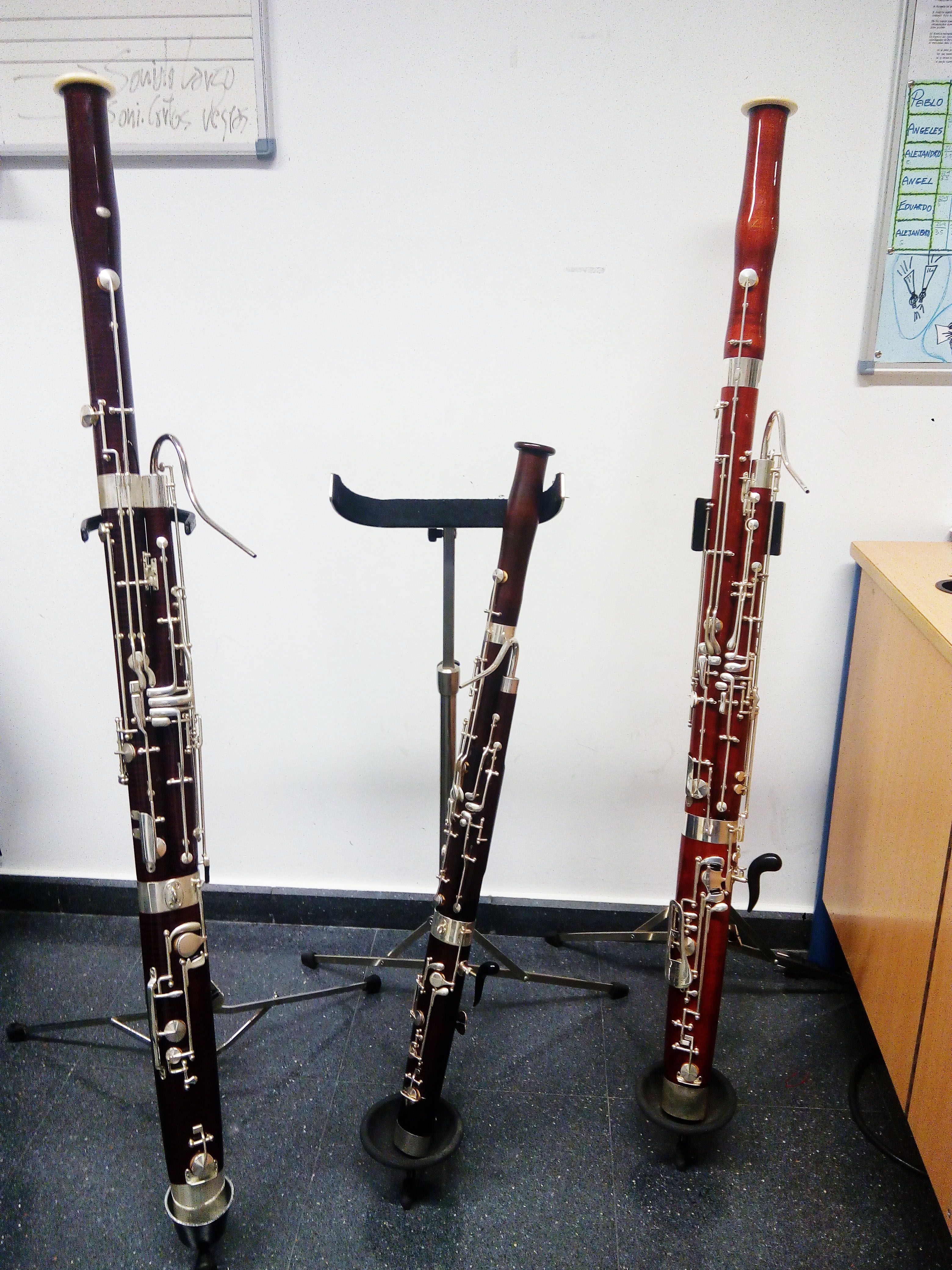fagot, educacion musical infantil, http://promocionmusical.es/: