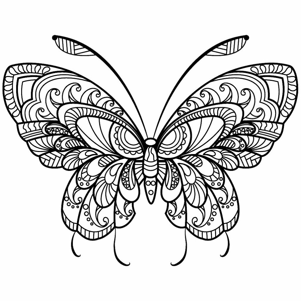 Fantastic Butterfly Coloring Page