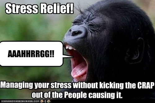 Funny Memes For Stress : Stress relief captions and memes