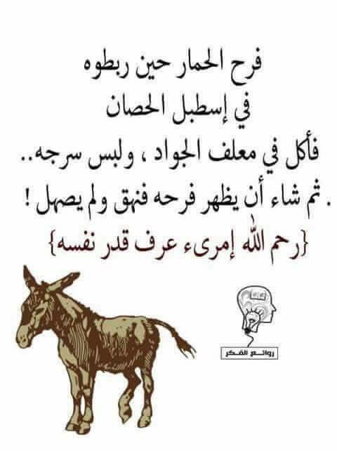 Pin By Ahmed Oraby On Citations Arabes Arabic Quotes Wisdom Quotes Words Quotes