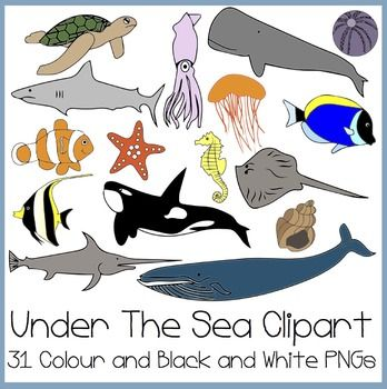 Ocean activities: FREE Clip art! Under The Sea Clip art (Finding ...