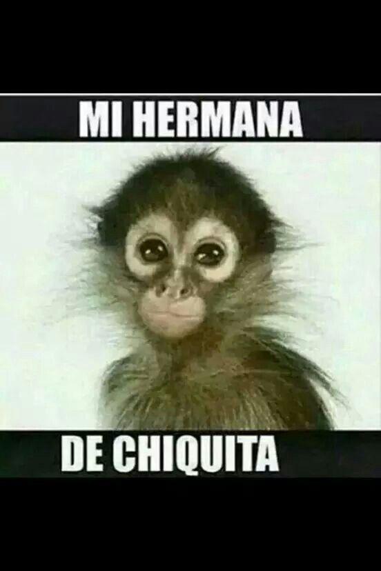Changa Memes En Espanol Humor Humor Mexicano