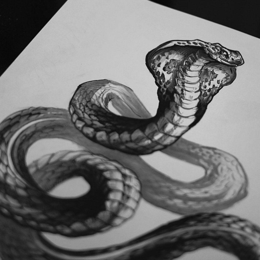 зеркала фото эскизов змей имеет простой