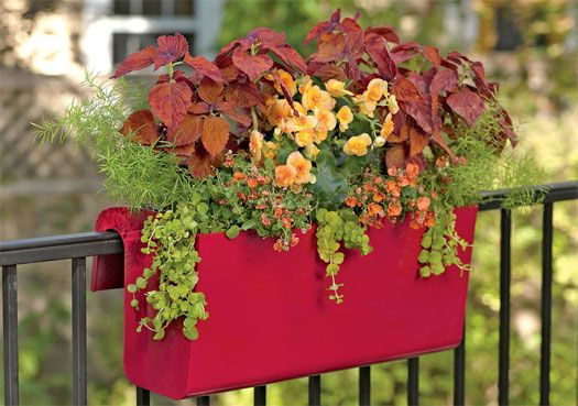 How To Create Sensational Pots And Planters Railing Planters