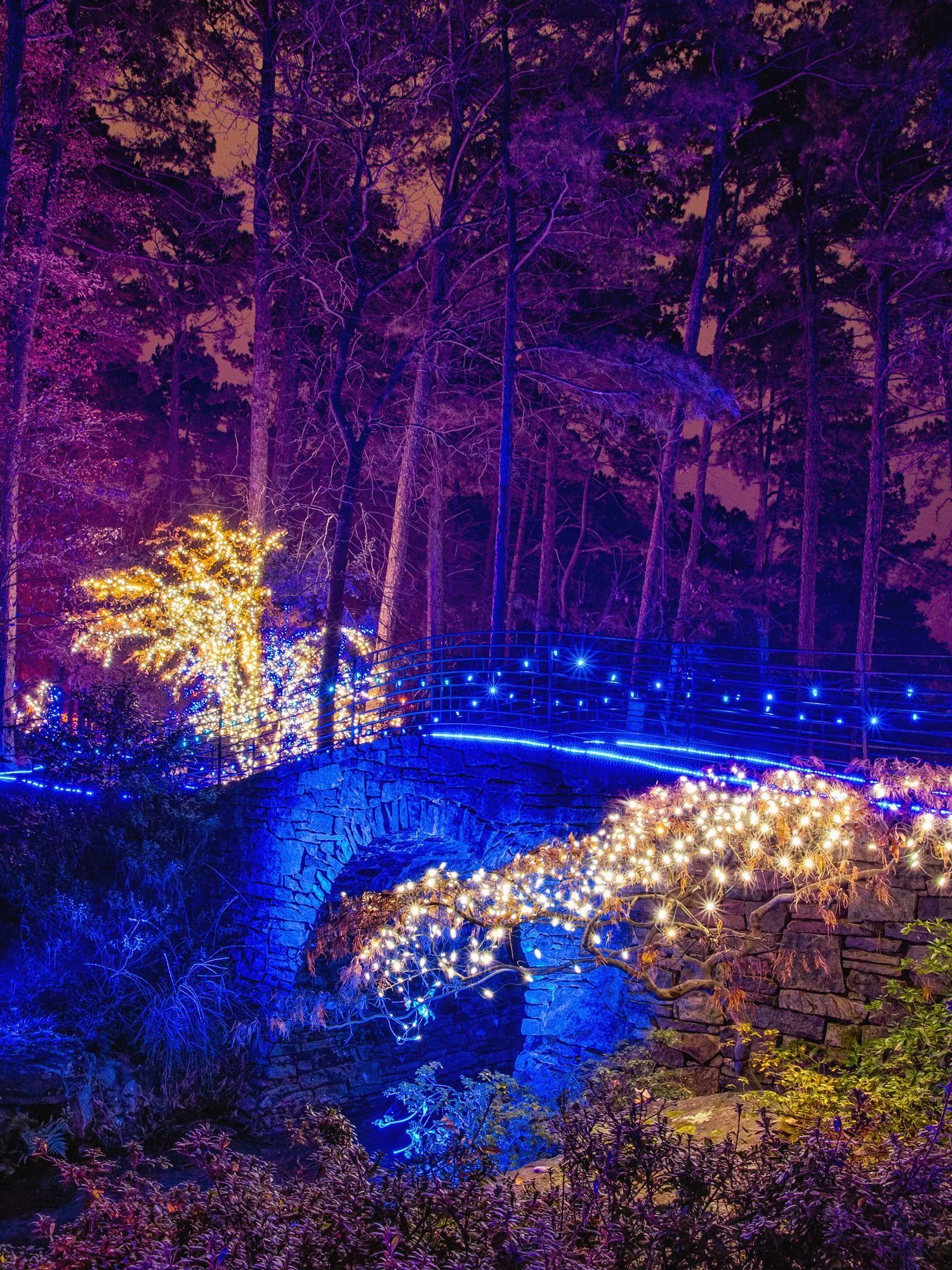 75388c2f03424dac84cc18e0b74014ce - Garvan Gardens Hot Springs Christmas Lights