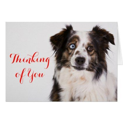 Australian Shepherd Aussie Dog Thinking Of You Card Australian
