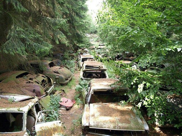 Car graveyard sigh