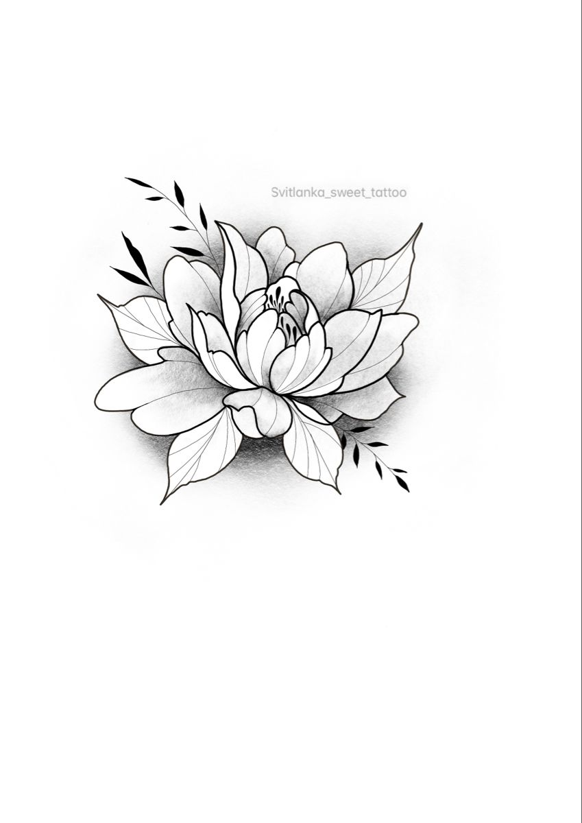 #peony #peonysketch #graphicpeony #graphictattoo #botanicalsketch