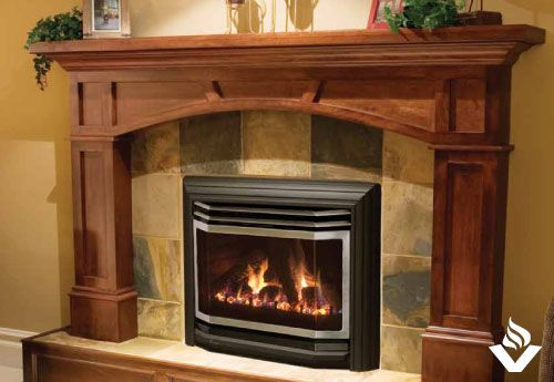 Euro 25 B Vent Fireplace Gas Fireplace Gas Fireplace Insert Wood Fireplace Inserts