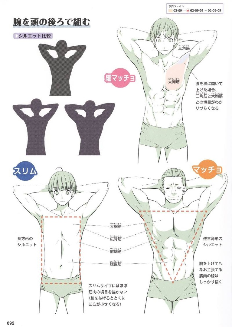 Reference Guide For Drawing Male Muscles 160 Fotografias Vk Body Reference Drawing Figure Drawing Reference Guy Drawing