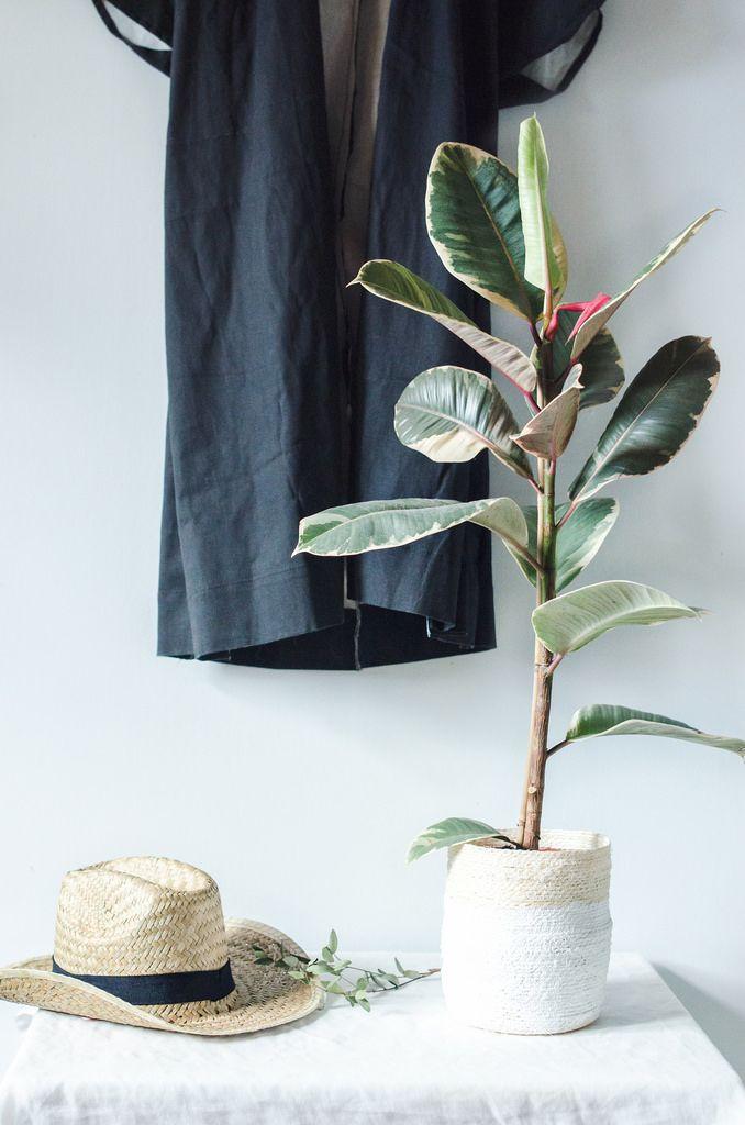 Do It Yourself Home Design: DIY Rope Pot Tutorial