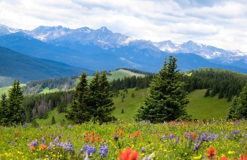 Shrine Pass Colorado Travel Inspired Scenery Photography Background