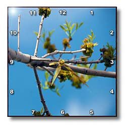 The Stem of a Beautiful Tree Partly Out of Focus, Partly In Focus on a Vivid Blue Sky Wall Clock