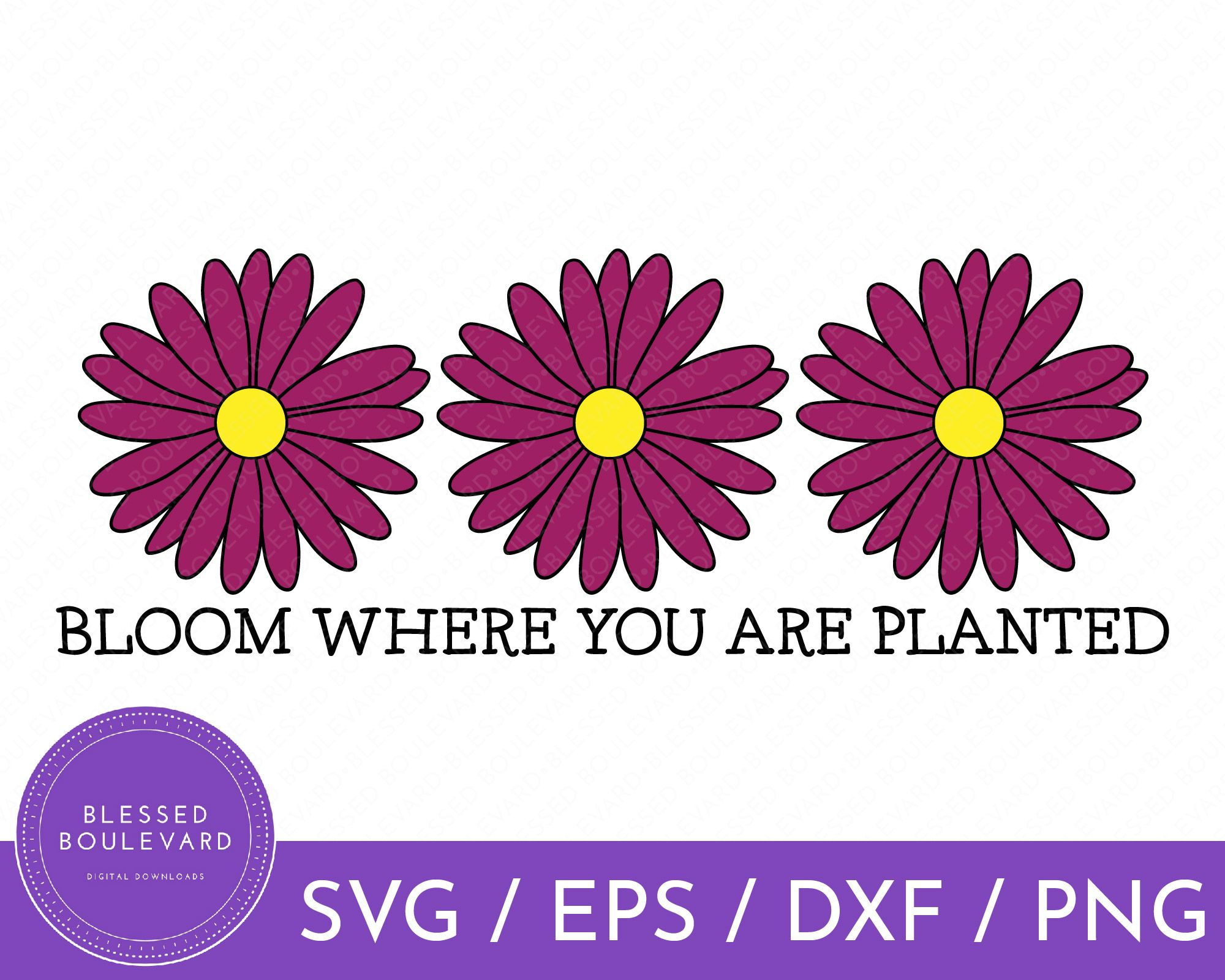Bloom Where You Are Planted Svg Flower Svg Garden Svg Quote Svg Saying Svg Daisy Svg Png Dxf In 2020 Flower Svg Bloom Where You Are Planted Cards Handmade