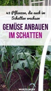 Selbstversorger Garten Garden Garten Selbstversorger Garten Garden Garten This Image Planting Vegetables Grow Potatoes In Container Container Potatoes