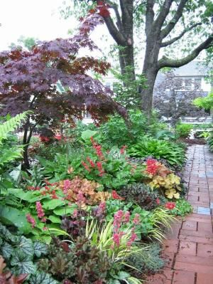 Shade Garden Heuchera Hostas Coral Bells Japanese Forest Grass Brunnera By Proteamundi Shade Garden Shade Garden Design Shade Plants