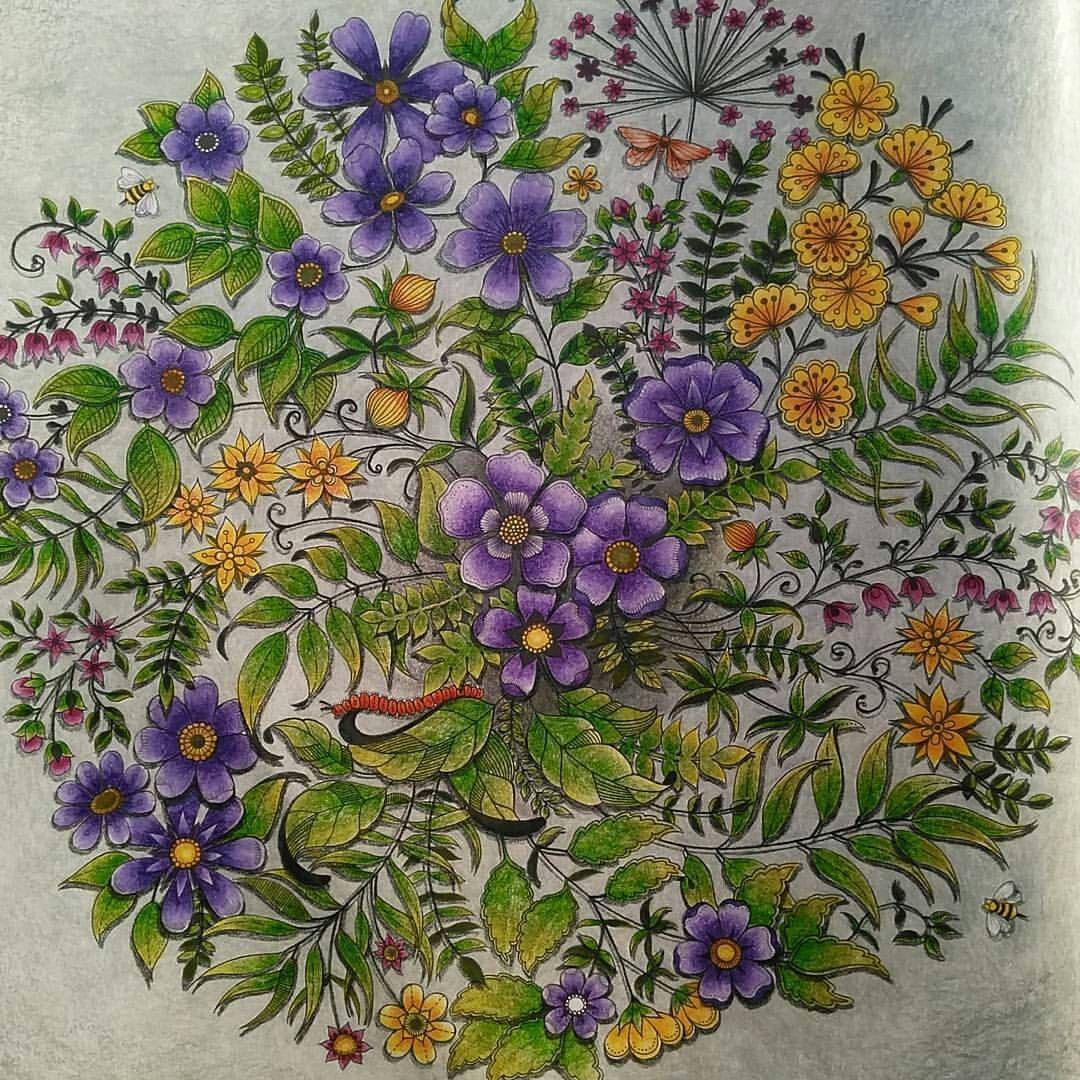 Arte Como Terapia On Instagram Amei As Florezinhas Regrann From Gulcincar Es Secret Garden Coloring Book Gardens Coloring Book Secret Garden Colouring