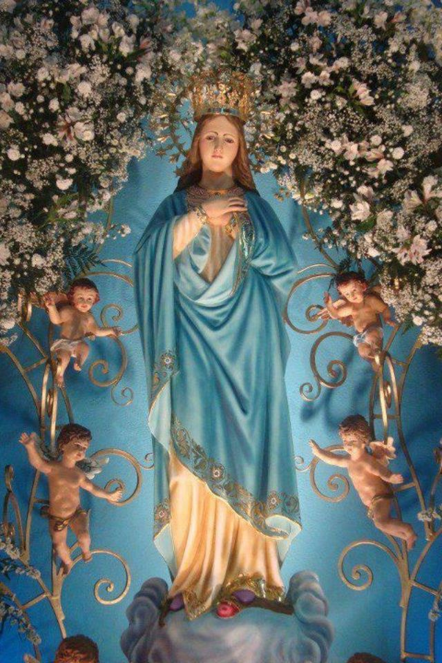 Virgin of virgin hail holy queen