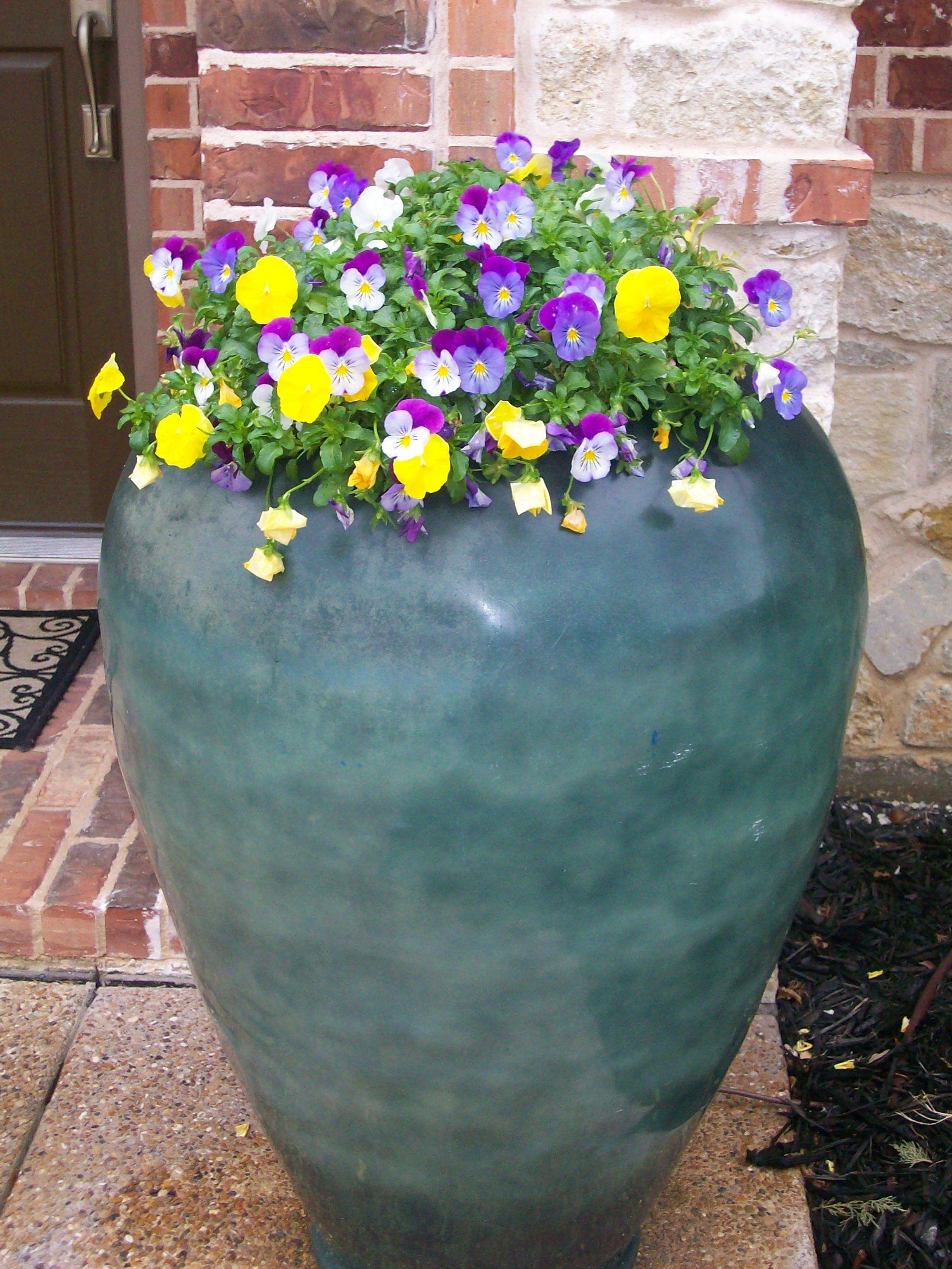 Pinterest & Our flower pots.. #big pot little flowers. | Planters | Garden Pots ...
