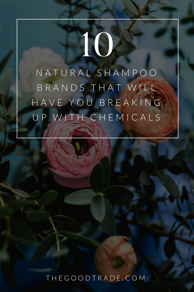 9 Organic & Natural Shampoo Brands That Will Have You Breaking Up With Chemicals #organichaircare