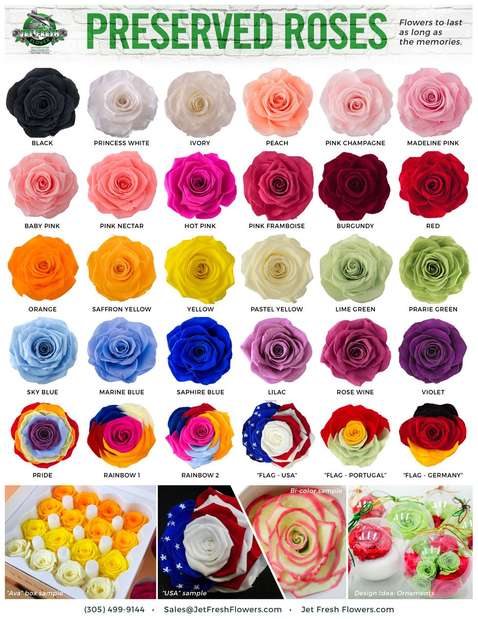 Variety Preserved Roses Come In All Sorts Of Colors And Are Made To Last Contact Jet Fresh Flowers F How To Preserve Flowers Rose Color Meanings Flower Chart
