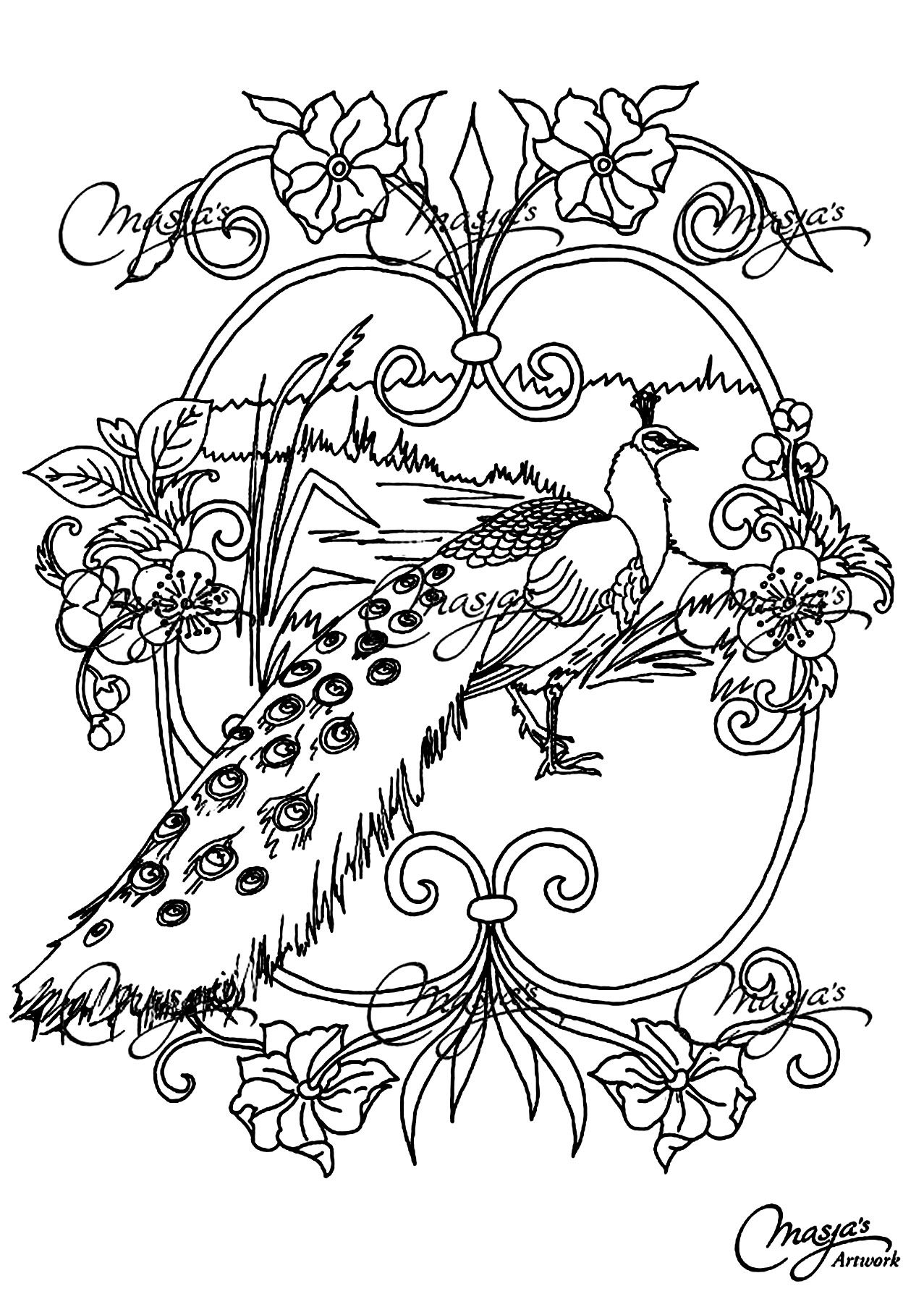 free coloring page coloring animals peacock coloring page