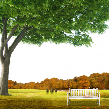 Garden Background Scene With Natural Background Garden Summer Vacation Png Transparent Clipart Image And Psd File For Free Download Landscape Clipart Natural Background Photoshop Backgrounds Free