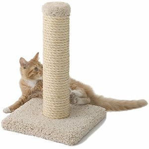 Deluxe Sisal Scratching Post By Miller S Cats Petsmart For My