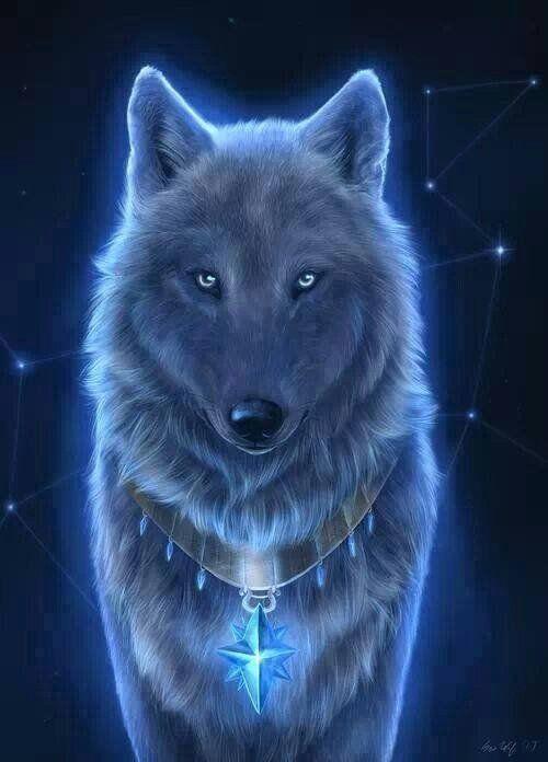 Pin Von Alice Townsend Auf Animals Wolf Malen Wolf Und Wolf Zeichnung