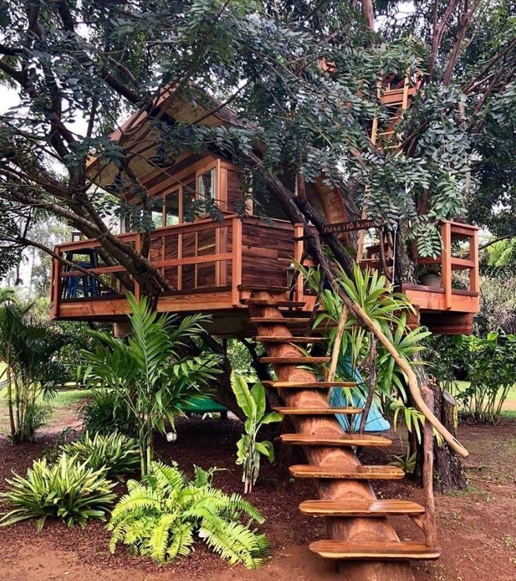 Reddit CozyPlaces Breezy backyard treehouse in Kauai Hawaii