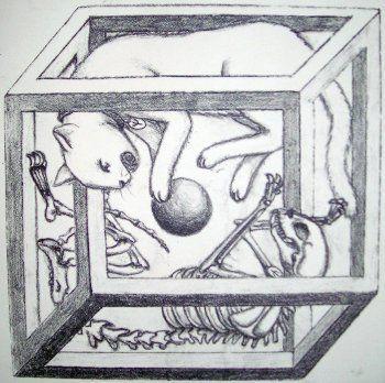 El gato de Schrödinger (y V) en 2020 | Superposiciones, Tatuaje ...
