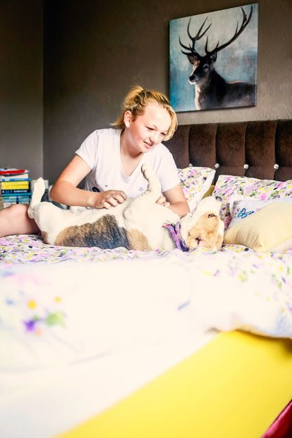 Wake Up Happy with Eve! | Mandy Charlton - It's so comfy that Holly Bobbins seems to have made that her go to resting place, if she goes missing we know she's on my bed and all of my girlfriends have been around and we've sat on it like teenagers and everyone agrees it's the comfiest mattress ever!!  Both daughters have slept in it and agree it's a great nights sleep too!