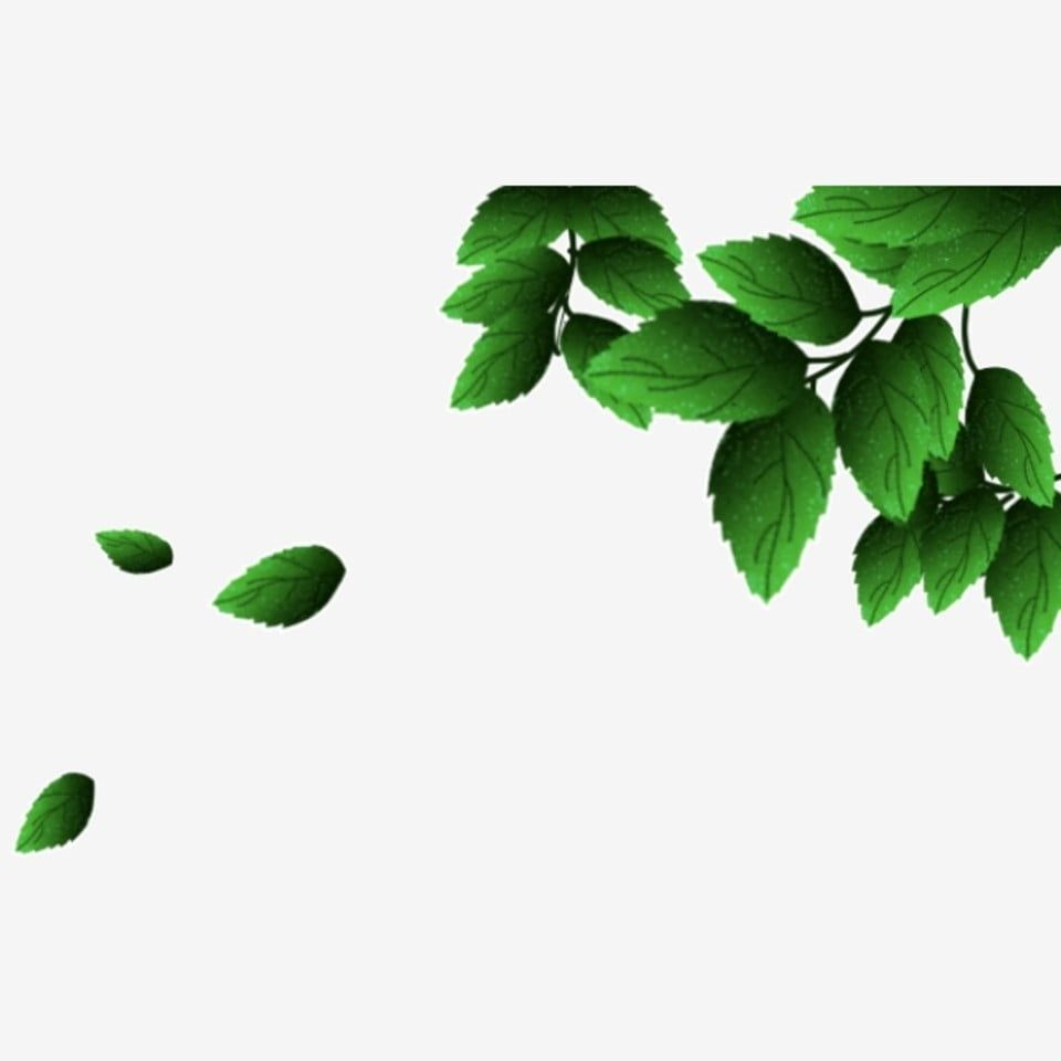 Green Leaves Png Material Fresh Transparent Background Green Leaves Png Material Fresh Png Transparent Clipart Image And Psd File For Free Download Green Leaf Background Spring Flowers Background Leaf Clipart