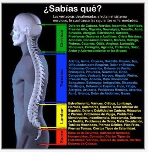 dolor crónico en la parte baja de la espalda daño en los nervios