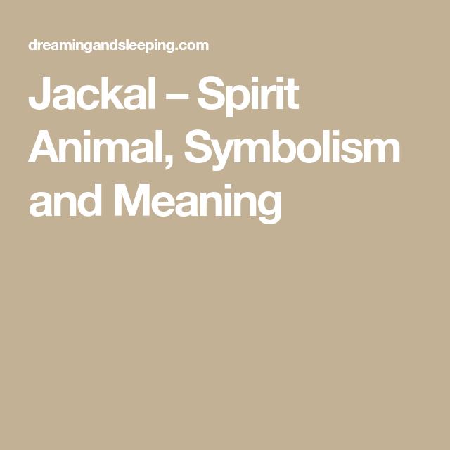 Jackal Spirit Animal Symbolism And Meaning Sanskrit Stuff