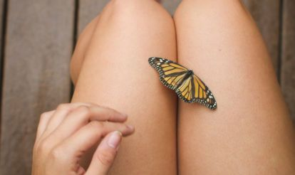5 Unexpected Ways To Repel Bugs This Summer Hero Image