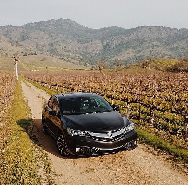 Acura ILX 2016. Going Back To Country.