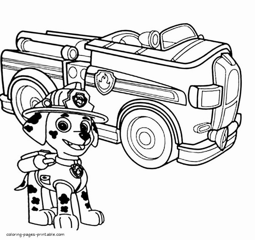 Paw Patrol Marshall Coloring Page Awesome Paw Patrol Marshall Drawing At Getdrawings In 2020 Paw Patrol Coloring Paw Patrol Coloring Pages Teddy Bear Coloring Pages