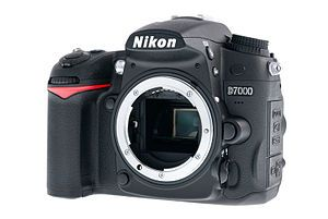 The Joy Of Digital Photography Nikon Digital Slr Camera