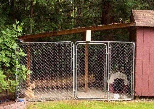 Should I Build or Buy a Dog Kennel Run? | Backyard dog ...
