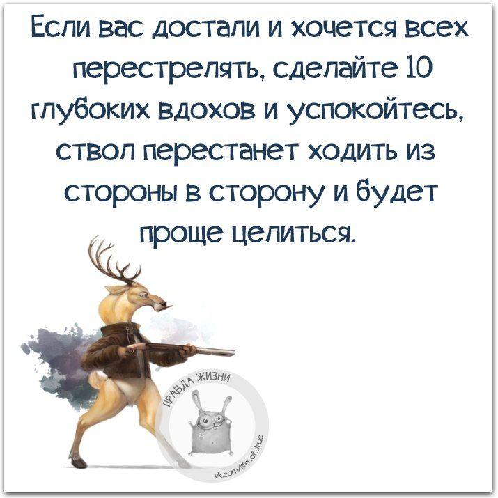 Правда Жизни Юмор Мотивация Сарказм Цитаты