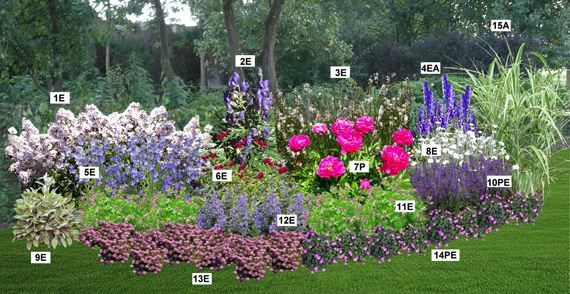 Massif pastel pr sentation plans de jardin pinterest for Plan massif jardin