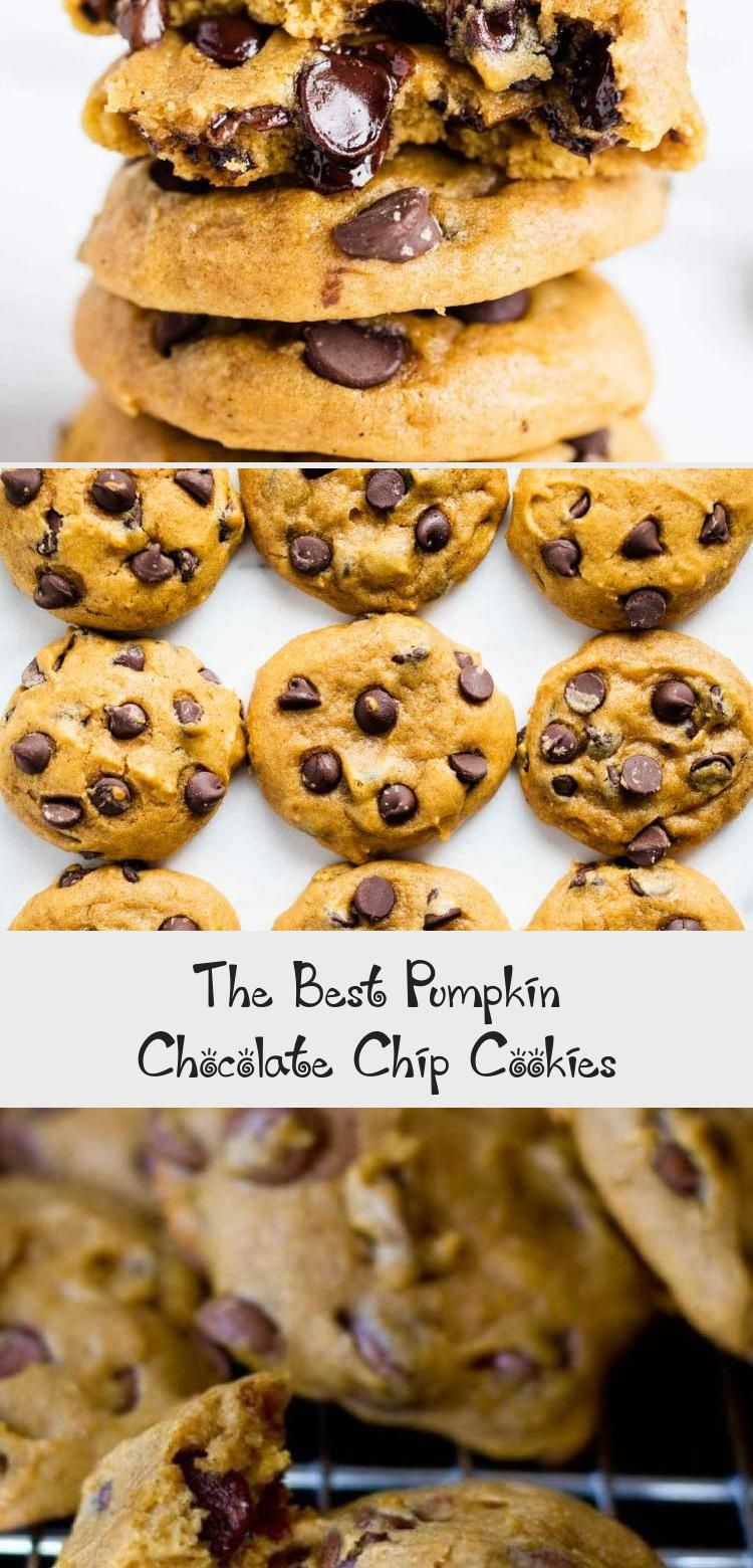 The Best Pumpkin Chocolate Chip Cookies Recipes Ideas In 2020 Pumpkin Chocolate Chip Cookies Cookies Recipes Chocolate Chip Pumpkin Chocolate Chip Cookie Recipe