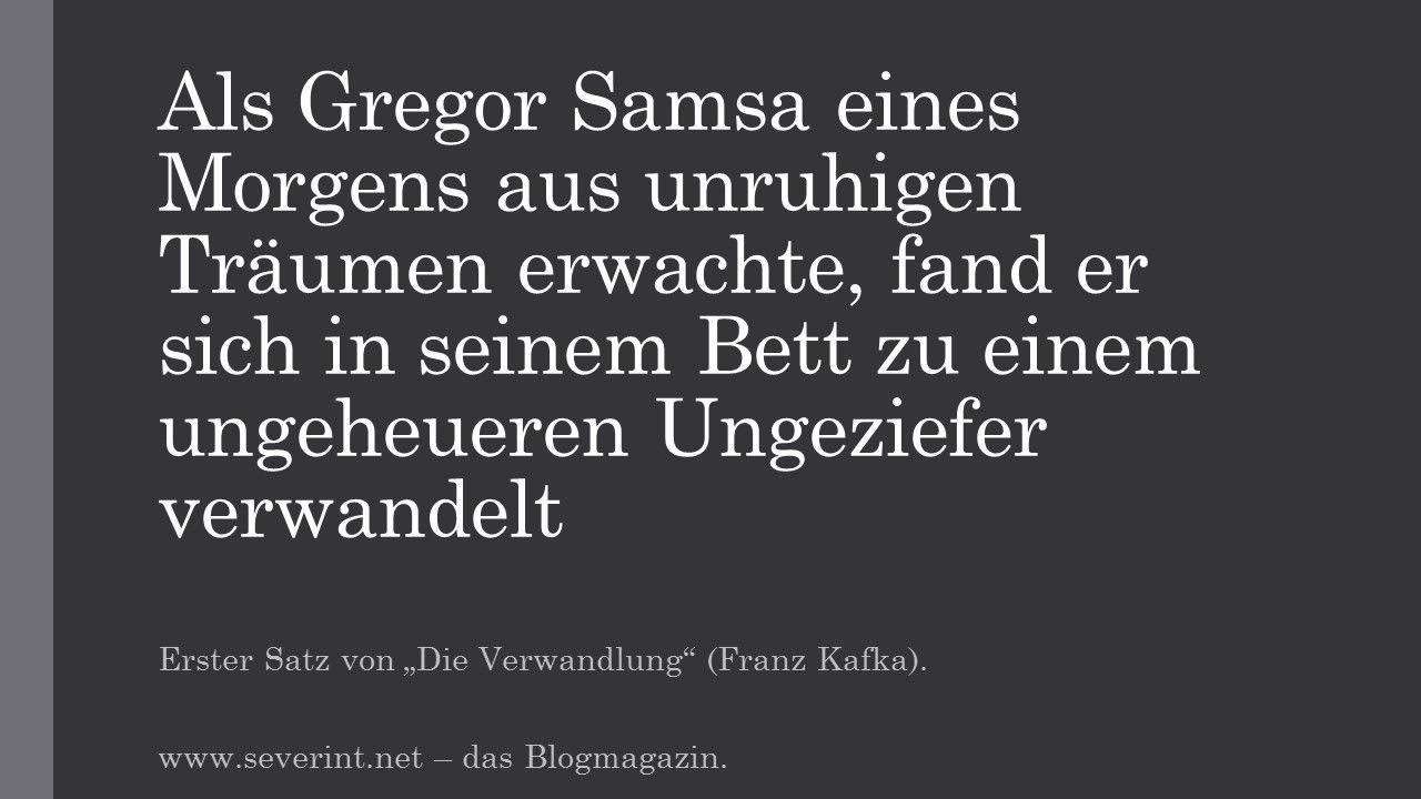 Gregor Samsa Weisheiten Zitate Gedanken