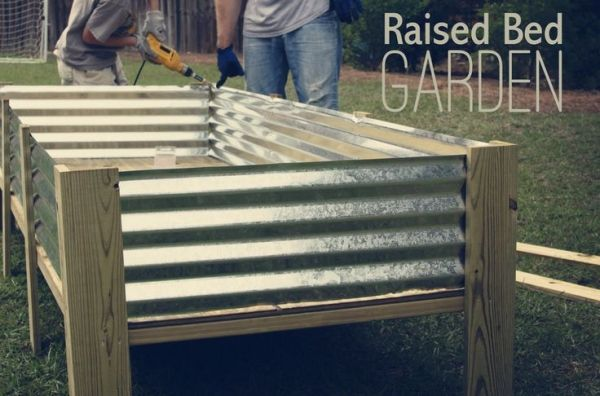 corrugated metal raised garden beds. DIY Raised Garden Beds By Maria.t.rogers Corrugated Metal